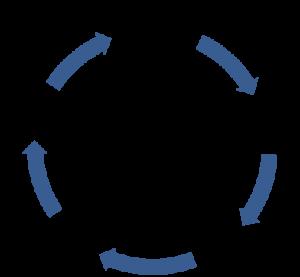 advice-process-diagram